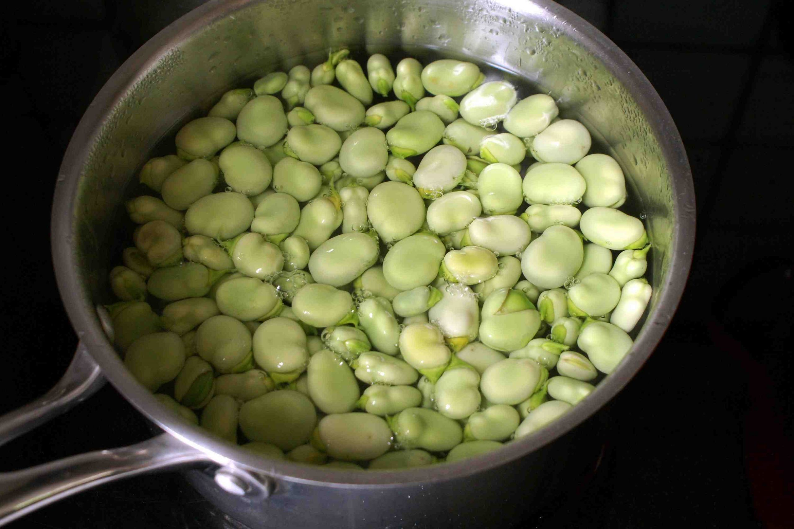 Comment cuire et manger des fèves ?